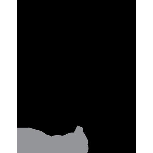 LRG_Logo_Black_Grey_500px.png
