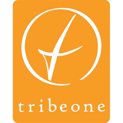Tribe One-LogoOrange_500px.png