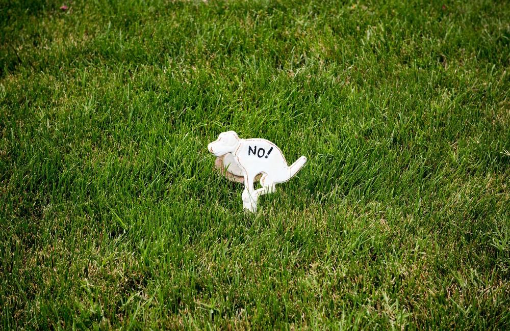 Eastport-Annapolis-Dog-Sign