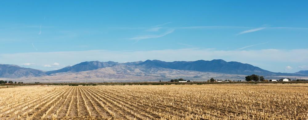 Farm-Delta-Utah