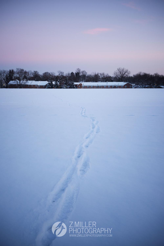 winter-2015-1