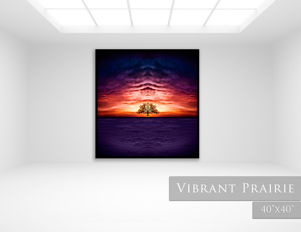 Vibrant-Prairie.jpg