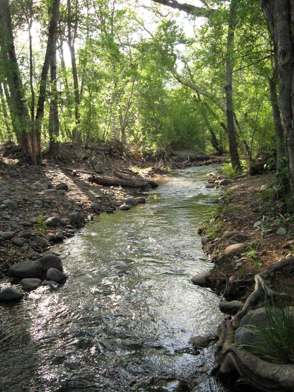 the-way-sedona-creek.jpg