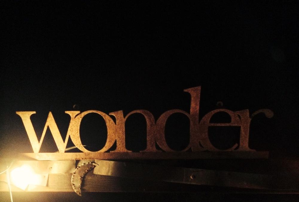 dark wonder.JPG