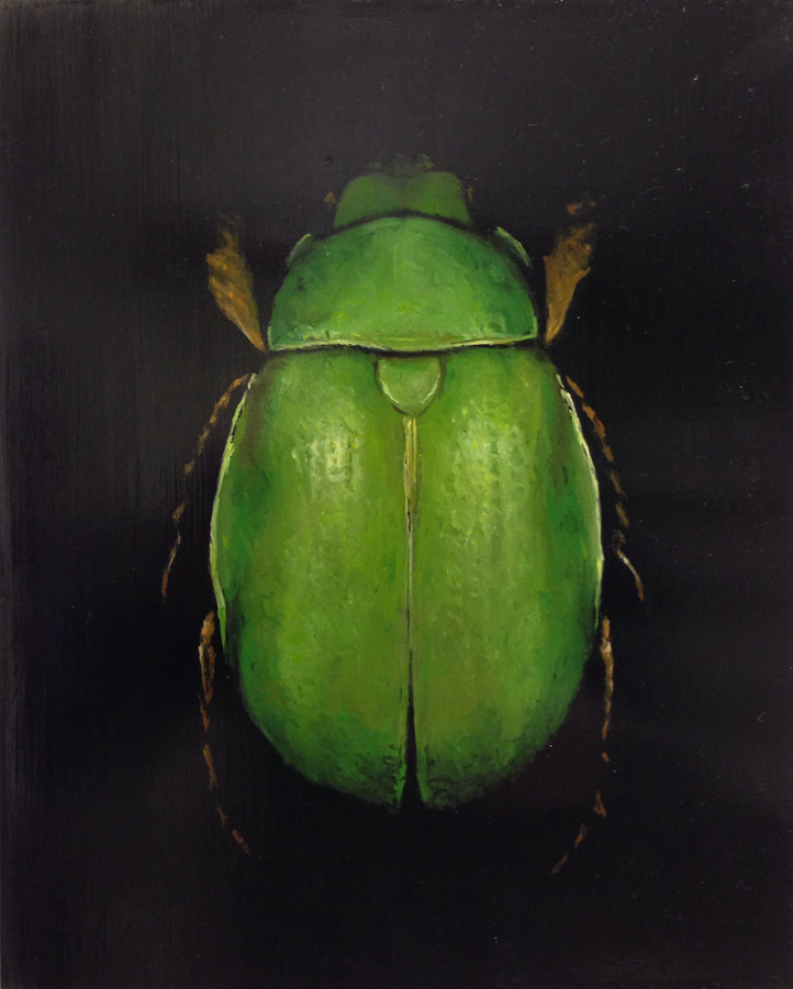Scarab by Brad Woodfin