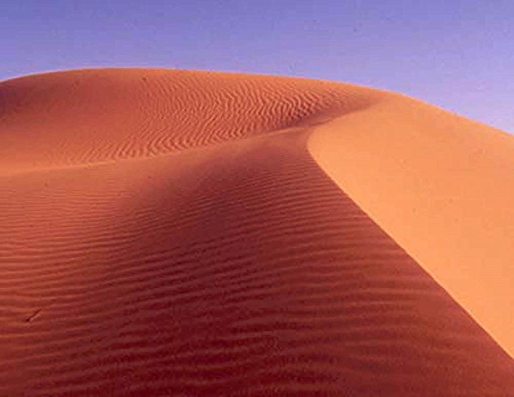 International Center for Advanced Medicine-Saudi Arabia - The desert