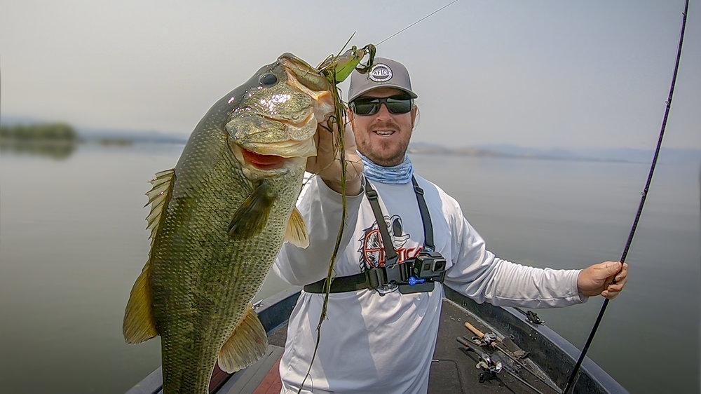 Matt Fish2.jpg