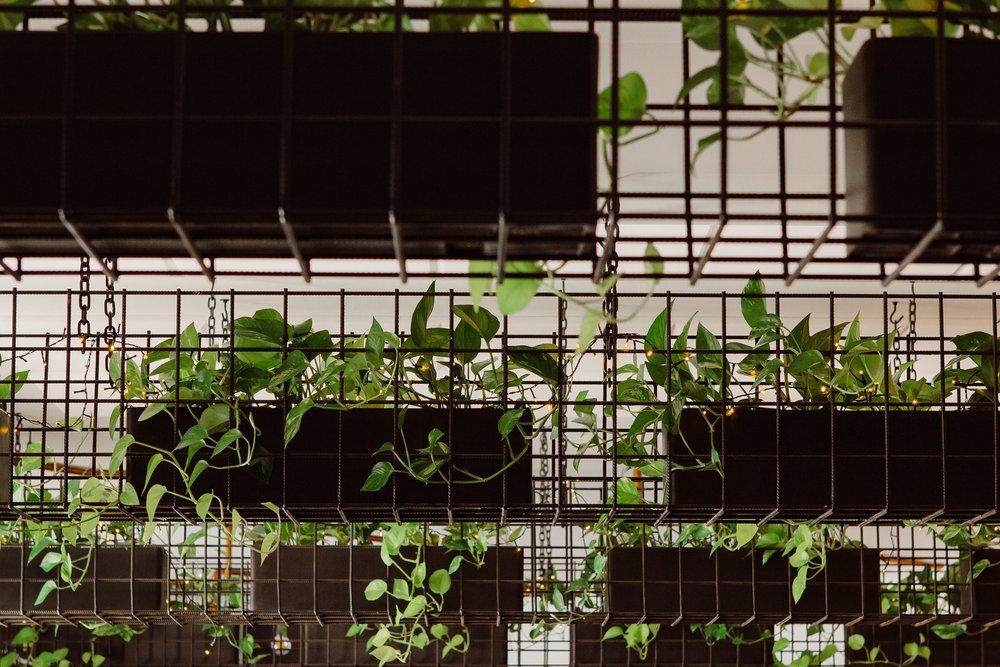 AaronShumPhotograpghyAustralianPhotographer-3.jpg