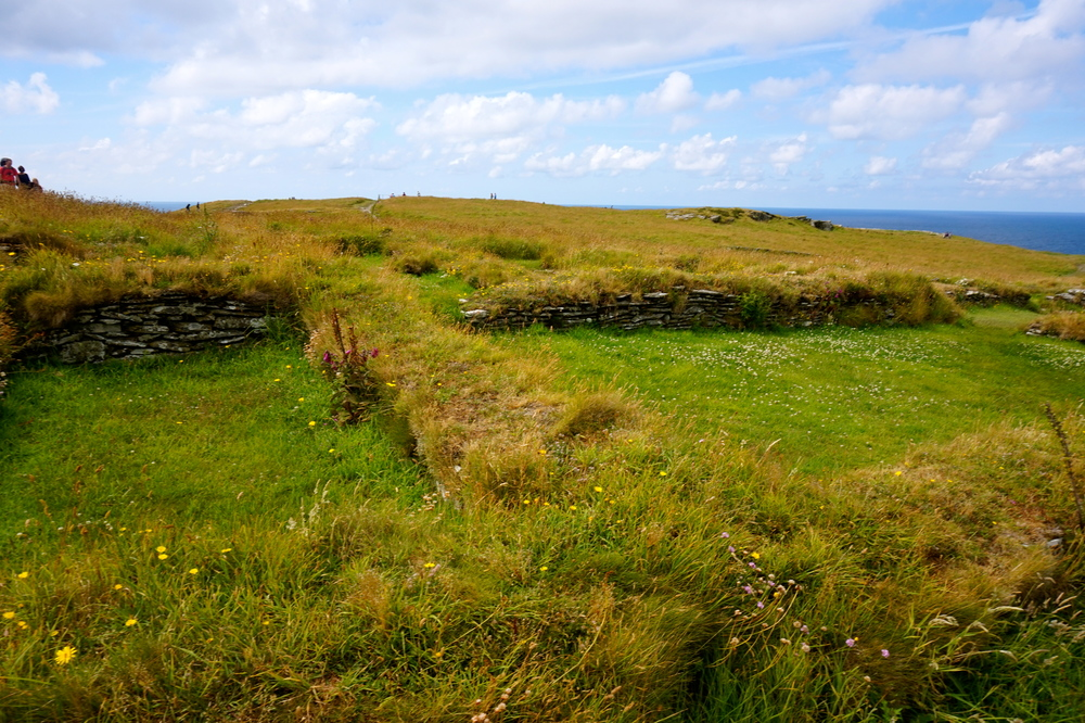 Hidden ruins in the grass