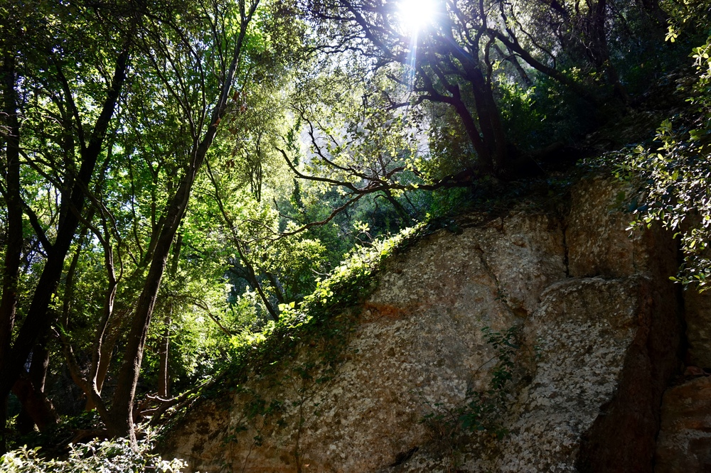 hikingmontserrat.jpg
