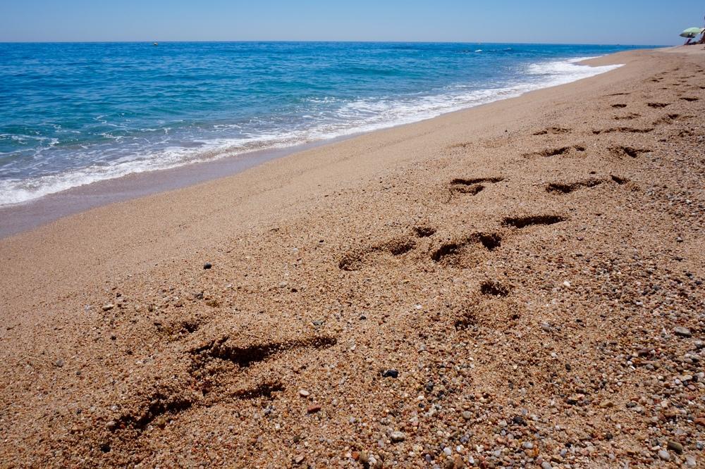 footprintsinsand.jpg