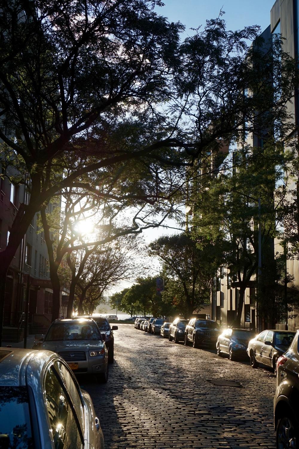 sunsetinchelseanyc.jpg