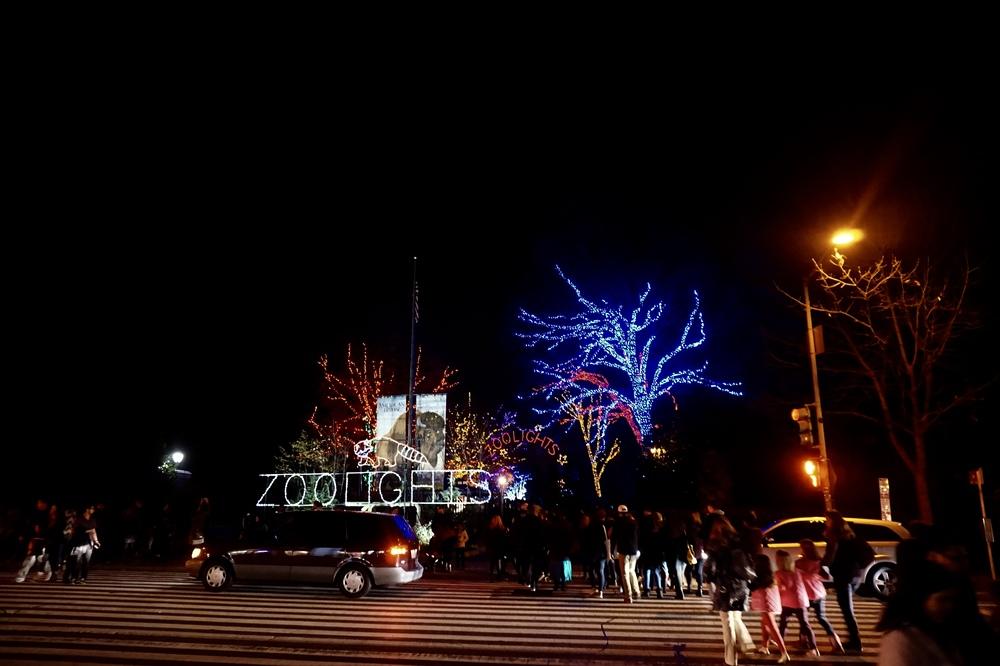 zoolightsdc.jpg