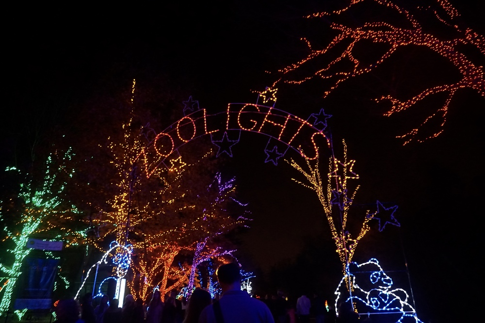 smithsonianzoolights.jpg