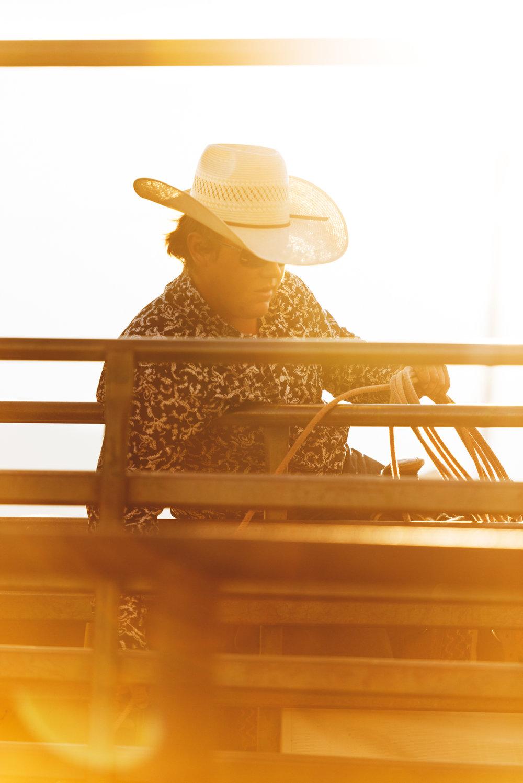 rodeo_10.jpg