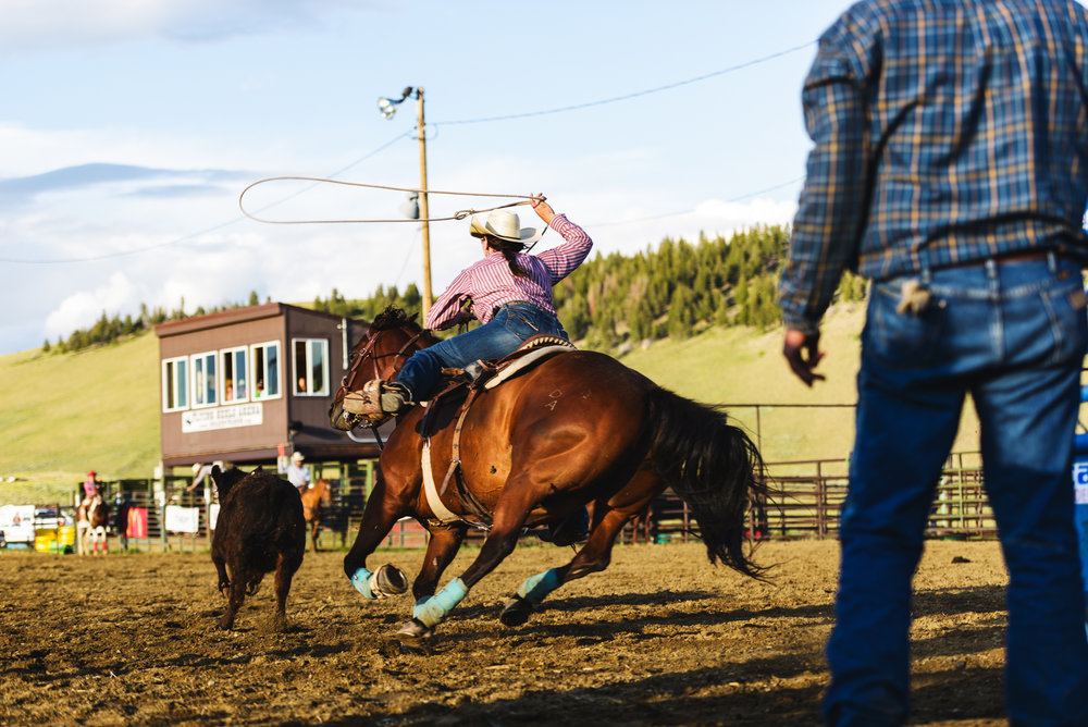 rodeo_11.jpg