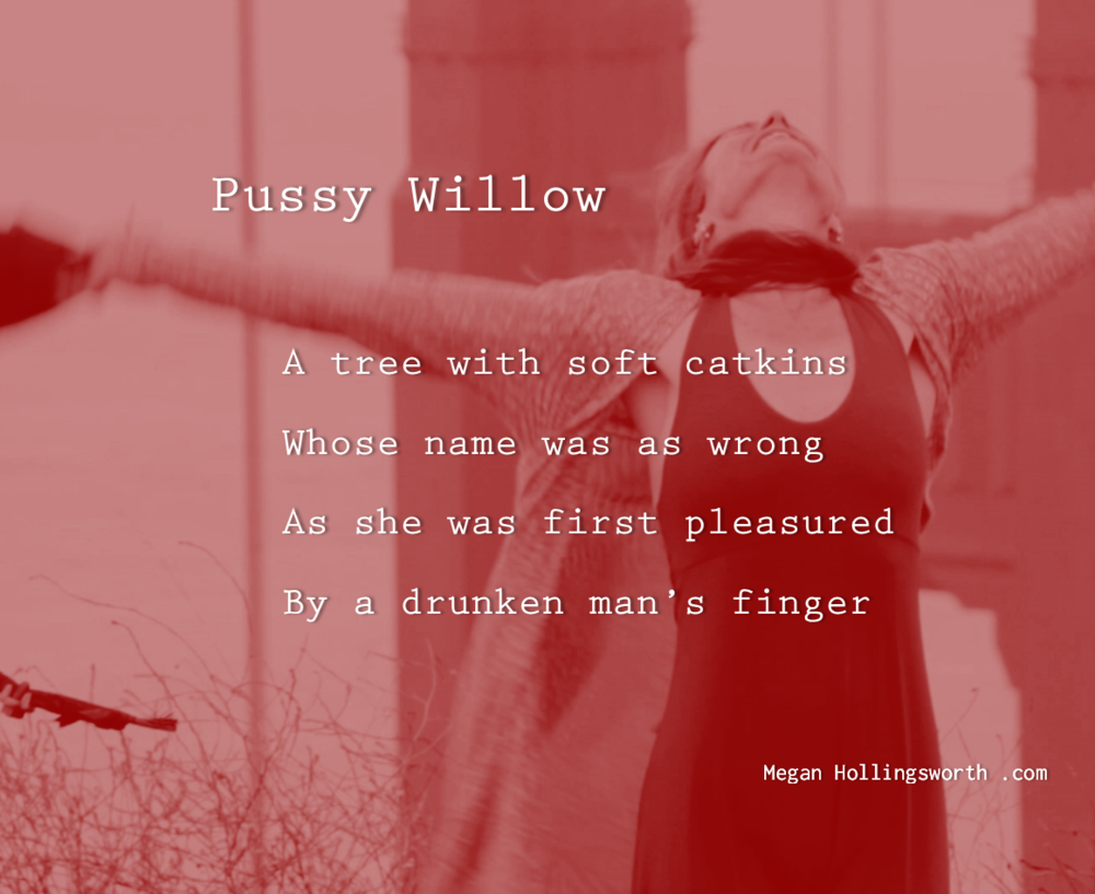 """Triggered by Donald Trump's  """"And when you're a star [and they're starved], they'll let you do it. You can do anything. Grab them by the pussy."""", PUSSY WILLOW was written after I cooled down with a walk, during which I recalled how, as a girl, I was afraid to touch pussy willow catkins because I might be seen enjoying the sensation. The first that came out of me after hearing the audio recording was,  """"There's no pussy on a dead planet, Daddy.""""  The anger I experience when triggered is not directed at Donald Trump or my maternal step-grandfather, who molested me at the age of three, or the drunk man in 2014, who could not resist my vulnerability, or other men who behave poorly thus, themselves products of the culture we (they and I and perhaps you)have been raised in. Notice in the audio recording at    Fusion   , no man stood up for women or for themselves as dignified men."""