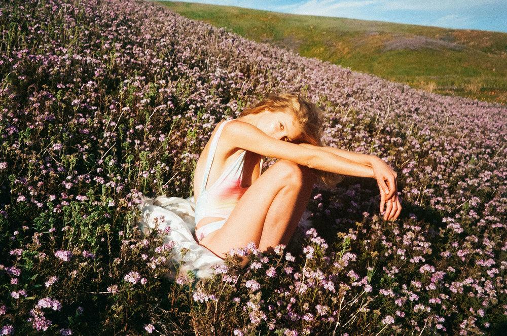 Jen_Senn_River_wildflowers_-8.1.jpg