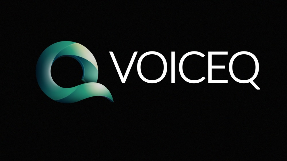 VoiceQ_Frame_01.jpg