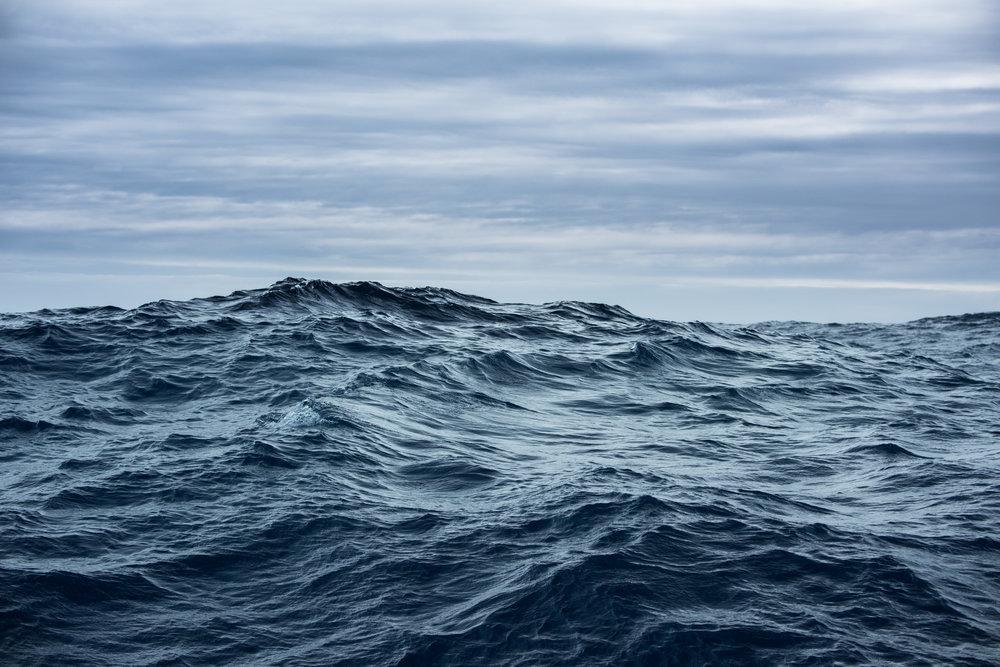 Antartica (9).jpg