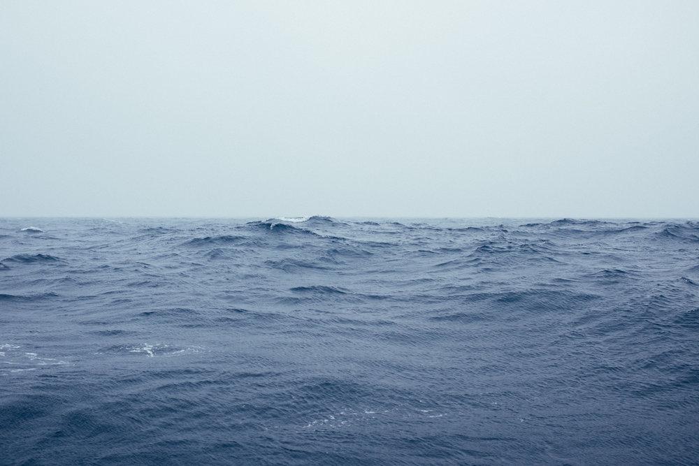 Antartica (88).jpg
