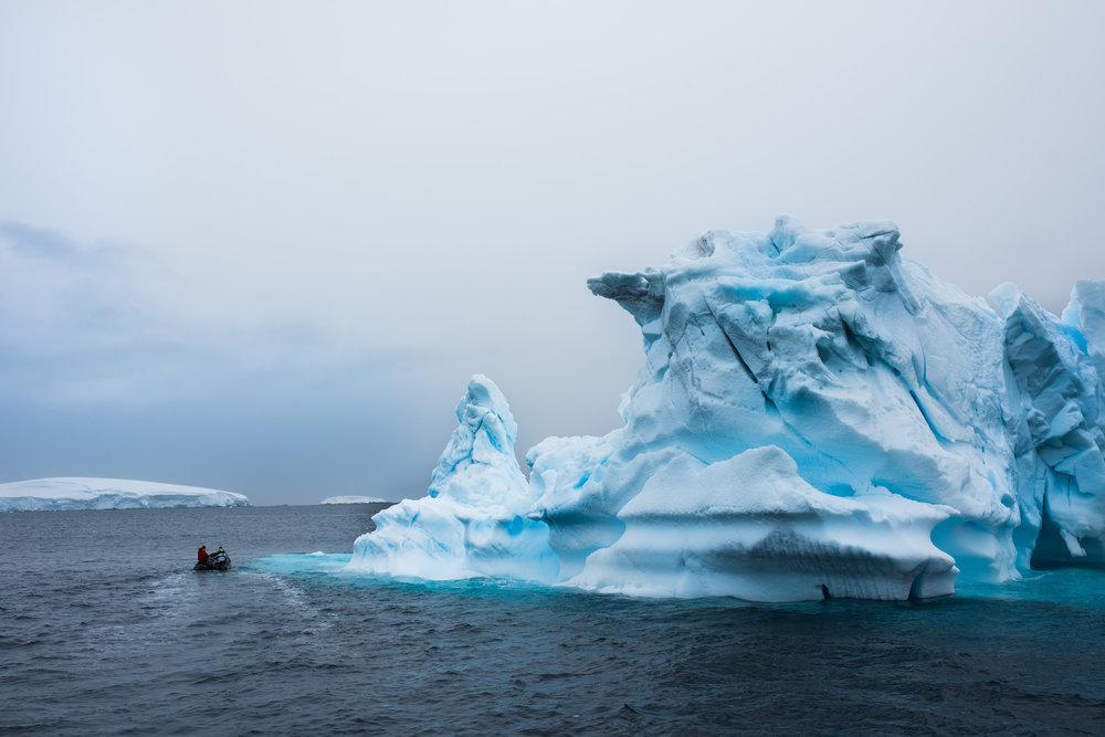 Antartica (89).jpg