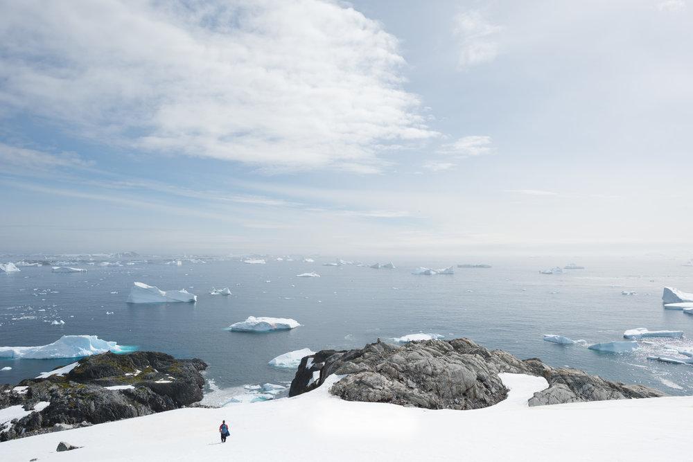 Antartica (96).jpg