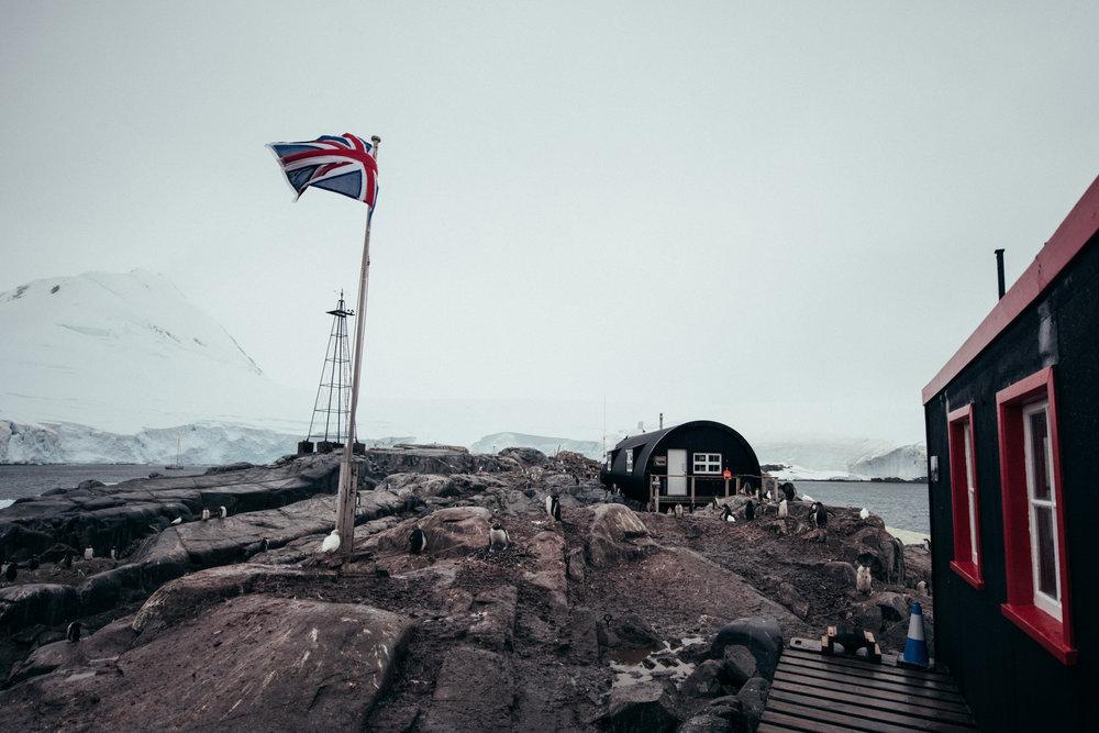 Antartica (131).jpg