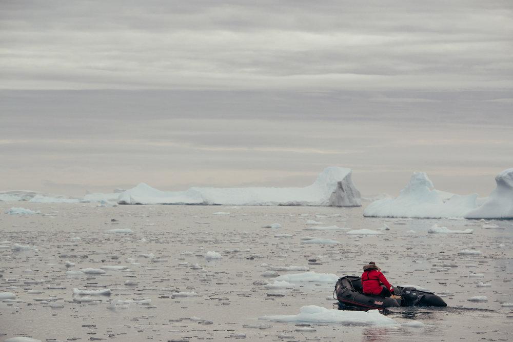 Antartica (149).jpg