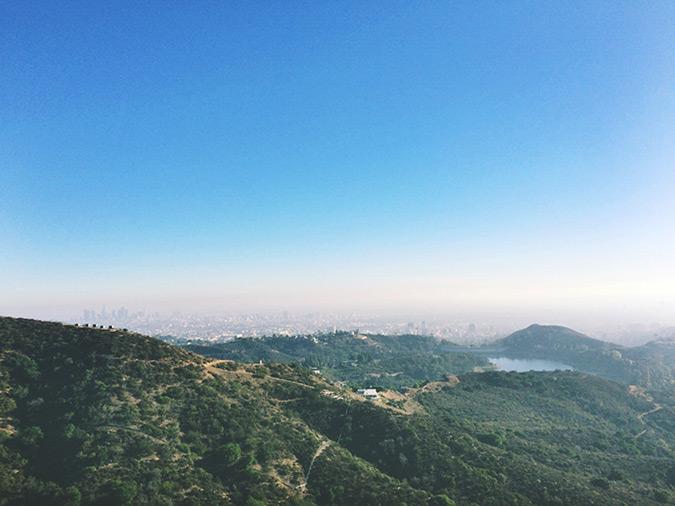 The Wisdom Tree & Cahuenga Peak - Los Angeles, CA — hikeology