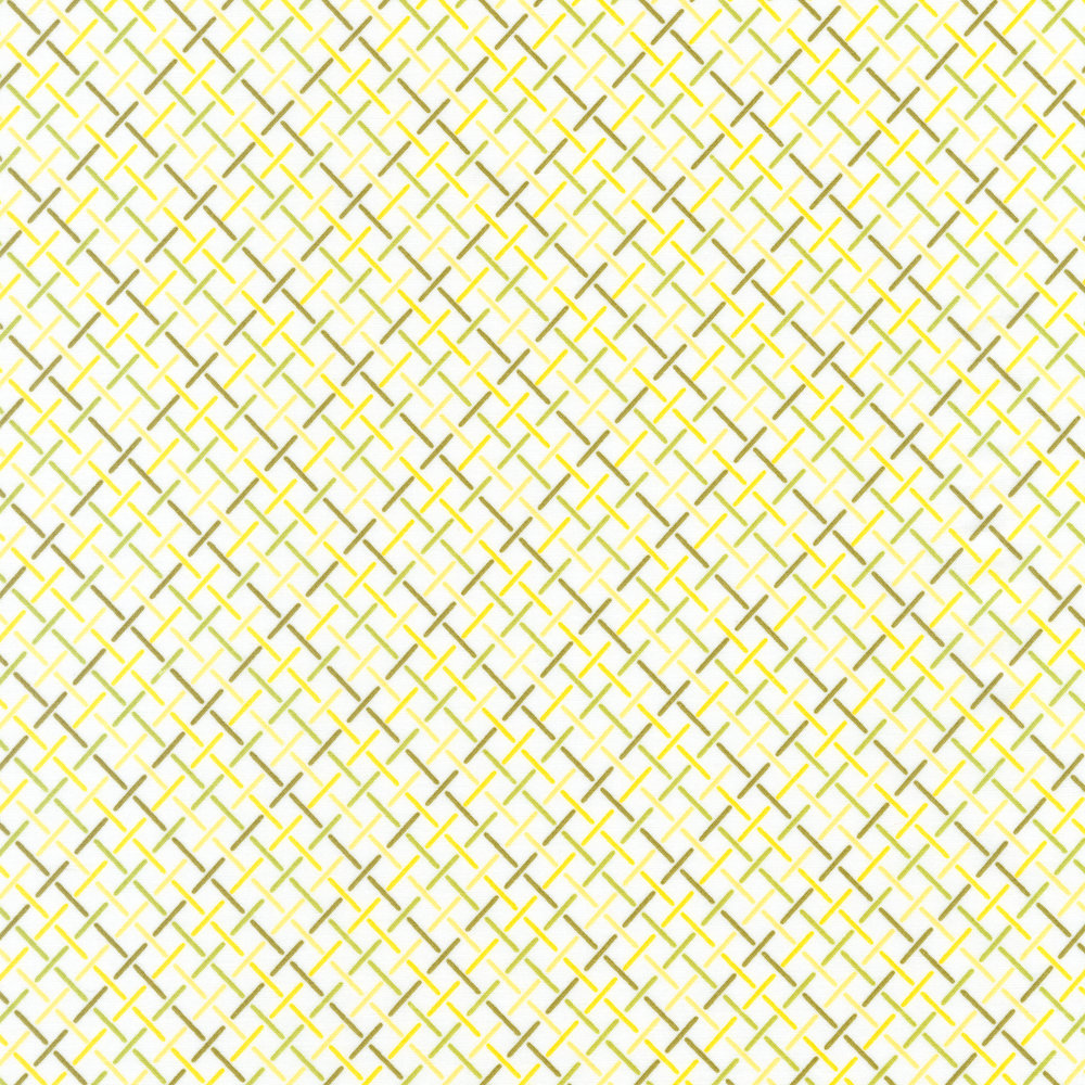 AVL-18153-49 Raffia Weave OLIVE