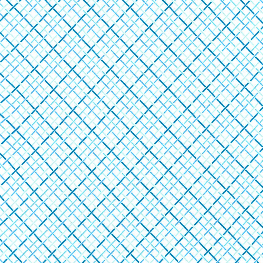 AVL-18153-246 Raffia Weave WATER