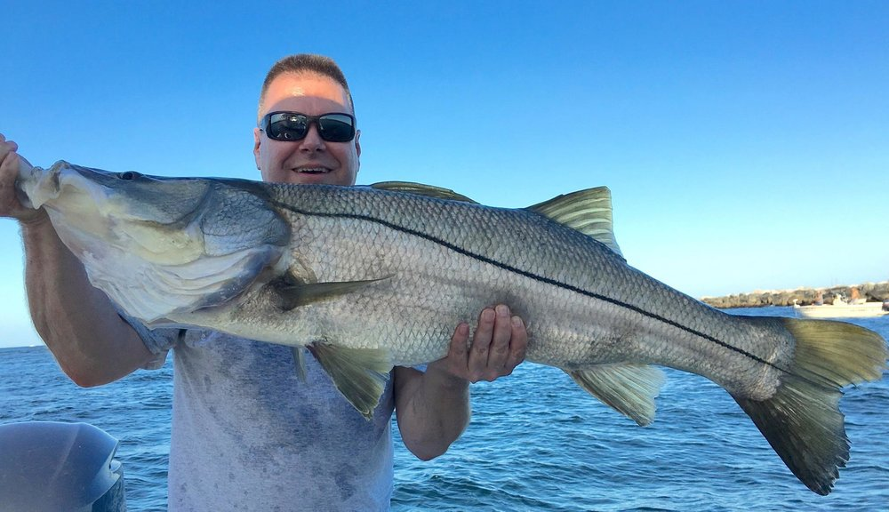 The Mad Snooker - Electron Fish Attractors drawsthem in big time! They work!!Pro-Staff Capt. Dave Pomerleau