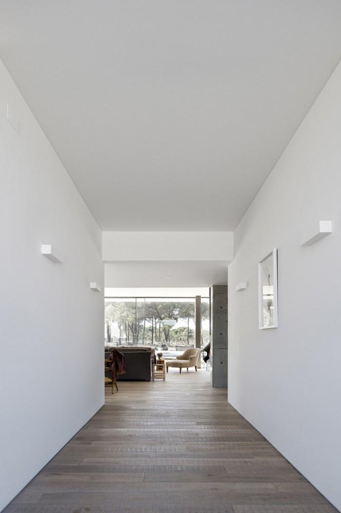 52cbfdafe8e44e1bc800009d_comporta-house-rrj-arquitectos_6_73-664x1000.jpg