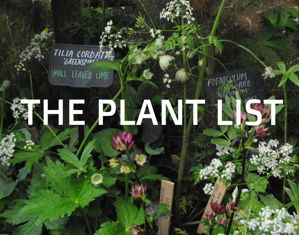 Open for the list of plants used in the garden