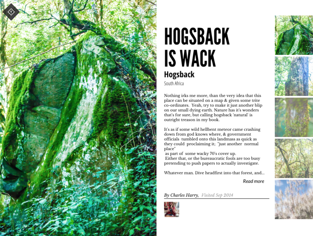 Review: Hogsback is whack