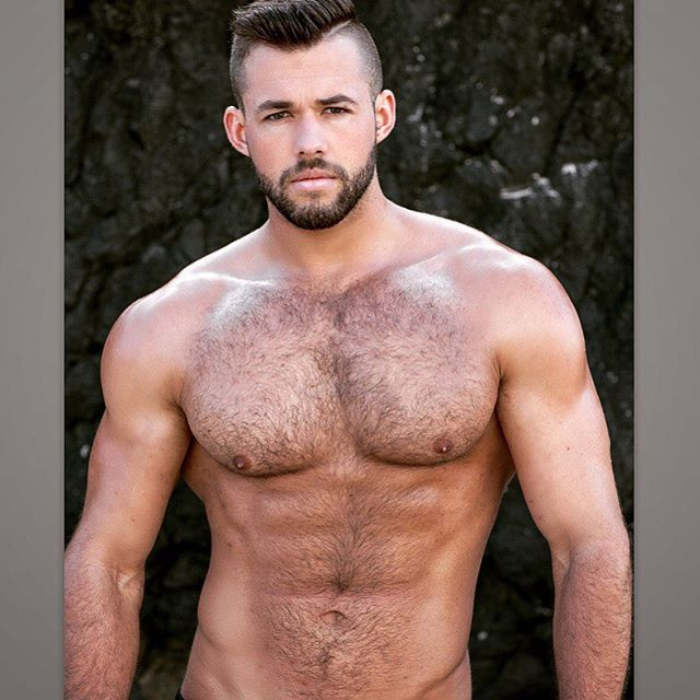 A snap of @william_allan_model when we shot last summer! #men #model #beard #beautiful #pecs #abs #instagood  #hunk #hairy #hairyabs #fitnessmotivation