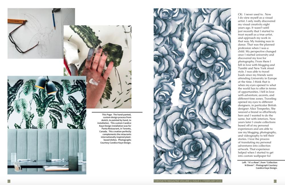 TorosietteMagazine_CandiceKayeDesign_Page1.png