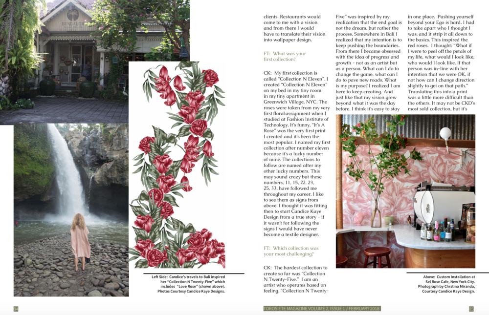 TorosietteMagazine_CandiceKayeDesign_Page2.png