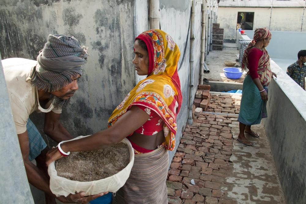 Women working at a construction site Bangladesh.jpg