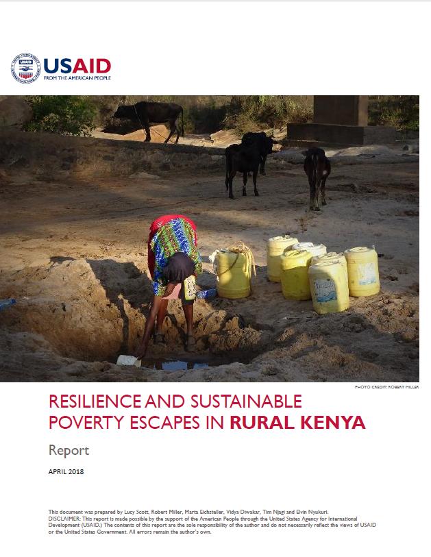 Kenya report USAID.PNG