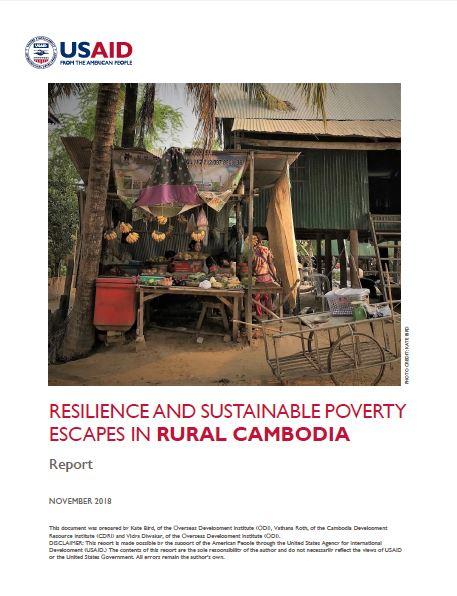 Cambodia USAID.JPG