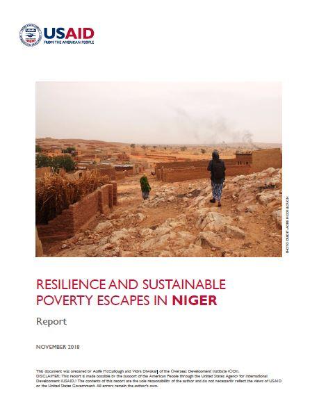 USAID NIger report.JPG