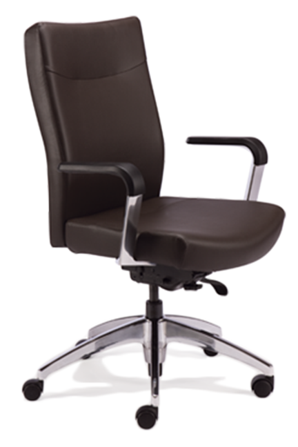 With clean lines, Arista chairs lend refinement and sophistication to any work environment. Their exceptional ergonomic qualities provide the ultimate in comfort.