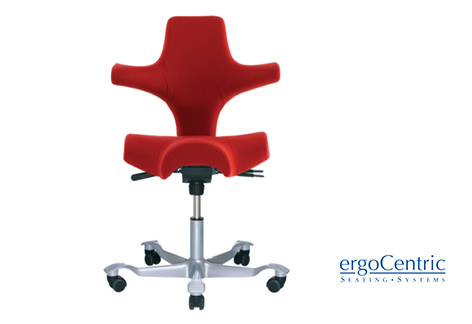 Ergocentric-Seating.jpg