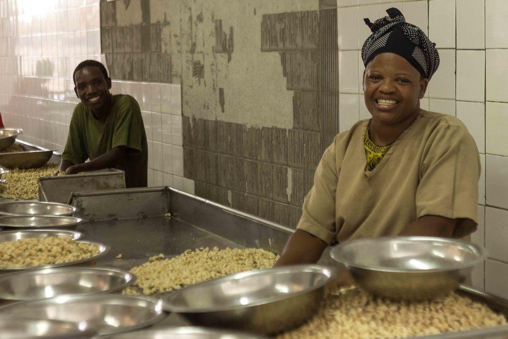 Anchilo district, Nampula province  – Two workers in the selection section of the Condor Nuts factory sort cashew nuts by quality and size |  Dois trabalhadores na secção de selecção da fábrica da Condor Nuts selecciona a castanha de caju por qualidade e por tamanho