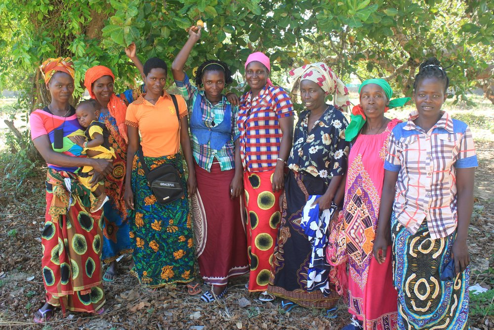 A few of MozaCajú's female promoters (left to right): Janete Caciano, Fatima Mussa, Zura Issumail, Gilda Jose, Bendita Rafael, Sofia Momade, Salima Amule, and Matilde Pedro