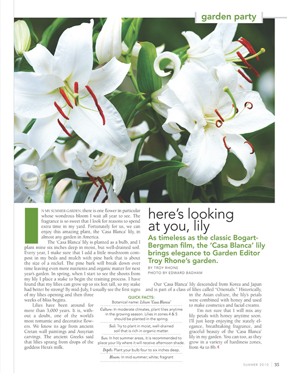 """Here's Looking at You, Lily"" Flower Magazine Summer 2010"