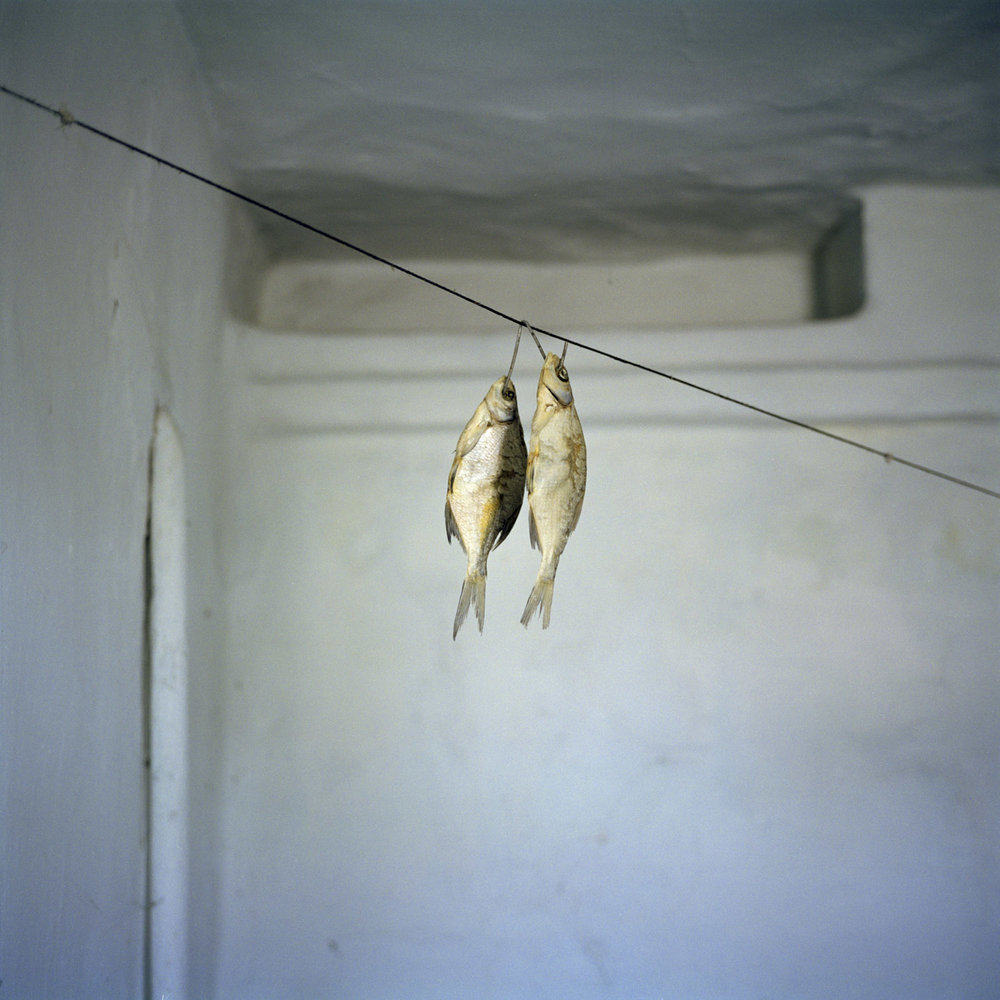 Dried fish in a deportee's home. Much of the food that descendants of Koreans eat follows the tradition brought from the far east. Ushtobe, Kazakhstan. 2016.