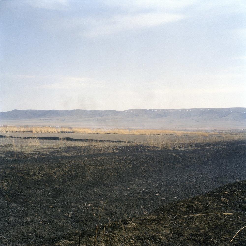 Stubble burning in preparation of the rice harvest, initially developed by Koreans upon their arrival in the Kazakh steppe in 1937. Ushtobe, Kazakhstan. 2016.
